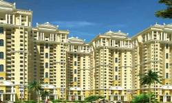 Amrapali Dream Valley- Noida